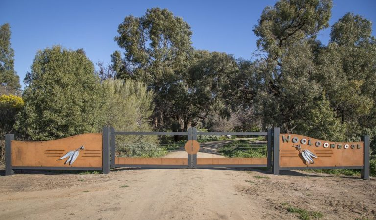 cor-ten steel and stainless steel gates